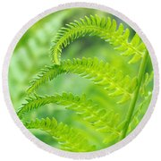 Spring Fern Round Beach Towel