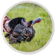 Round Beach Towel featuring the photograph Spring Gobbler by Michael Chatt