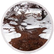 Round Beach Towel featuring the photograph Spring Into Winter by Kerri Mortenson