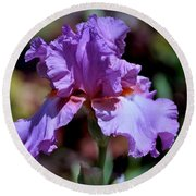 Spring Iris Bloom Round Beach Towel