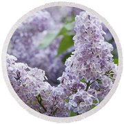 Spring Lilacs In Bloom Round Beach Towel