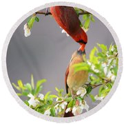 Cardinal Spring Love Round Beach Towel