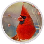 Spring Male Norther Cardinal Round Beach Towel