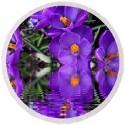 Round Beach Towel featuring the photograph Spring Reflection by Judy Palkimas