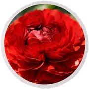 Spring Scarlet Double Begonia Round Beach Towel