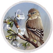 Round Beach Towel featuring the painting Spring Splendor by Mike Brown