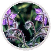 Round Beach Towel featuring the photograph Spring Wild Flowers by George Atsametakis