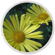 Spring Yellow  Round Beach Towel by Cheryl Hoyle