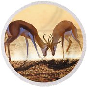 Springbok Dual In Dust Round Beach Towel