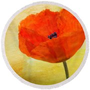 Springtime Poppy Beauty Round Beach Towel