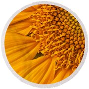 Square Sunflower Round Beach Towel