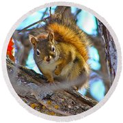 Squirrel Duty. Round Beach Towel