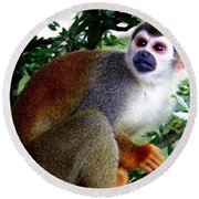 Round Beach Towel featuring the photograph Squirrel Monkey by Laurel Talabere
