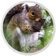 Squirrel With Pine Cone Round Beach Towel