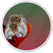 Squirrels Valentine Round Beach Towel