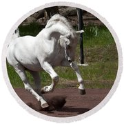 Stallion Round Beach Towel by Wes and Dotty Weber