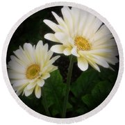 Stand By Me Gerber Daisy Round Beach Towel by Lingfai Leung