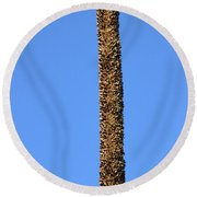 Round Beach Towel featuring the photograph Standing Alone by Miroslava Jurcik