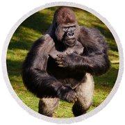 Standing Silverback Gorilla Round Beach Towel