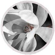 Star Magnolia Flower Round Beach Towel
