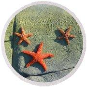 Starfish On The Rocks Round Beach Towel