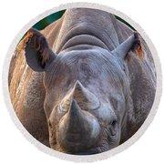 Staring Down Rhino Round Beach Towel