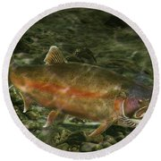 Steelhead Trout Spawning Round Beach Towel by Randall Nyhof