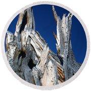 Steeple Roots Round Beach Towel