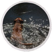 Round Beach Towel featuring the photograph Stick by Mim White