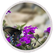 Still Beautiful Swallowtail Round Beach Towel