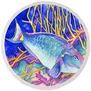 Stoplight Parrotfish Round Beach Towel