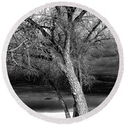 Storm Tree Round Beach Towel