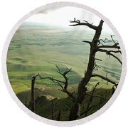 Round Beach Towel featuring the photograph Stormy Tree by Mary Carol Story