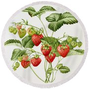Strawberry Round Beach Towel by Sally Crosthwaite