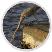 Round Beach Towel featuring the photograph Stretch - Great Blue Heron by Meg Rousher