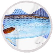 Striped Bass Round Beach Towel by Carey Chen