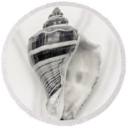 Striped Sea Shell Round Beach Towel