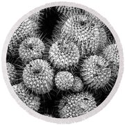 Study In Spines 1 Round Beach Towel