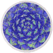 Round Beach Towel featuring the digital art Succulent - Blue by Jane Schnetlage