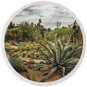 Succulents At Huntington Desert Garden No. 3 Round Beach Towel