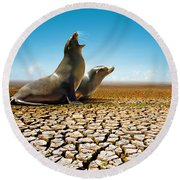 Suffering Seals Round Beach Towel