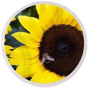 Summer Bee In Sunflower Round Beach Towel