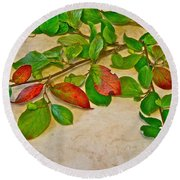Summer Leaves Round Beach Towel