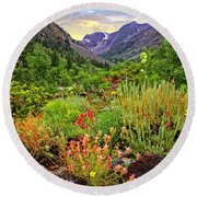 Summer Wildflowers In Lundy Canyon Round Beach Towel
