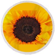 Sun Delight Round Beach Towel by Angela J Wright