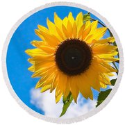 Sunflower And Bee At Work Round Beach Towel