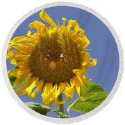 Sunflower At Latrun Round Beach Towel