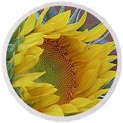 Sunflower Awakening Round Beach Towel