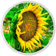 Sunflower Bloom Round Beach Towel