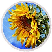 Round Beach Towel featuring the photograph Sunflower Fantasy by Barbara Chichester